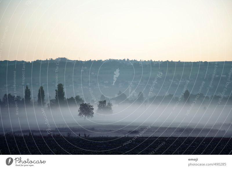 Nature Blue Landscape Dark Cold Environment Autumn Field Fog