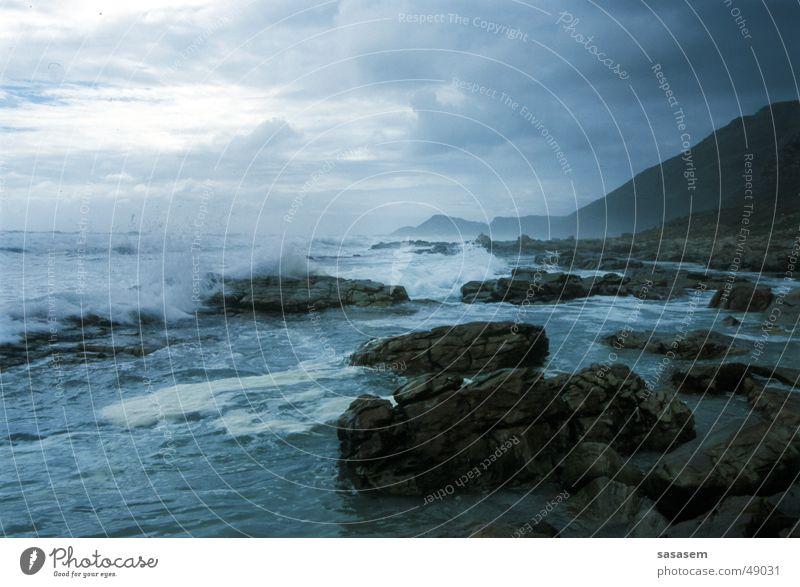 Sea, Cape of Good Hope Agitated Ocean Waves Beach Wild animal Water Stone