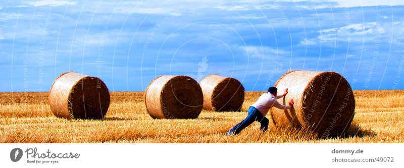 Man Sun Blue Summer Work and employment Meadow Hair and hairstyles Field Straw Pants Coil Hard Vest Push Bale of straw