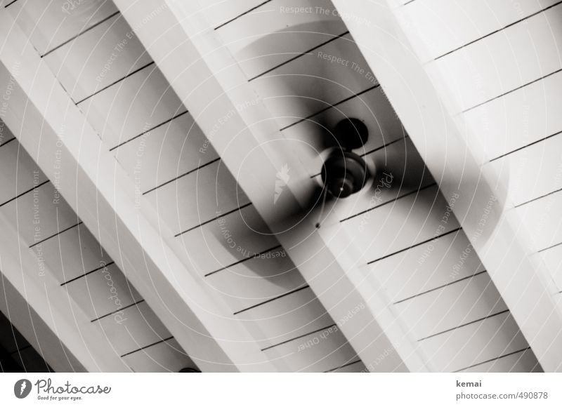 In transition once again Living or residing Flat (apartment) Ceiling Wooden ceiling Fan Speed Movement Line Joist Above ceiling ventilator Rotation