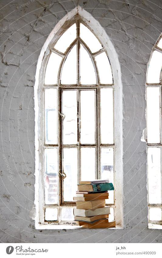 Relaxation Calm Window Wall (building) Architecture Wall (barrier) Stone Book Retro Reading Moving (to change residence) Serene Ruin Know Literature Reader