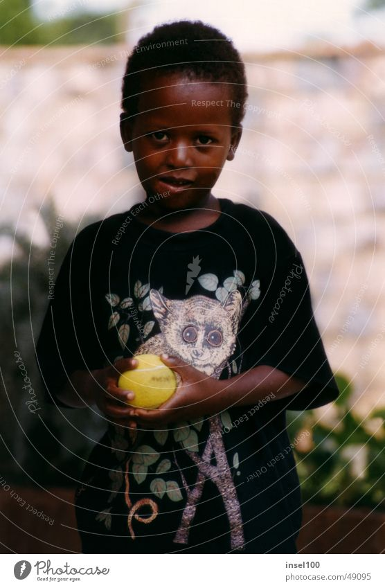 marklin Black Africans Child Friendliness Portrait photograph Face of a child Boy`s face Orphan Cute Beautiful Small Boy (child) Ball Human being