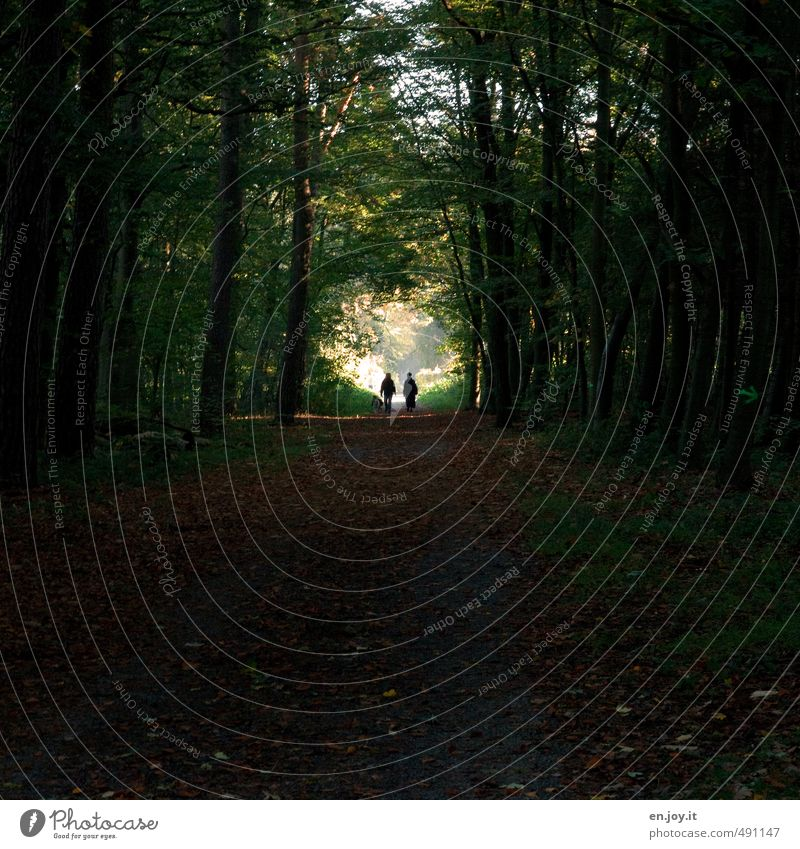 Exit? Human being Couple 2 Nature Landscape Plant Forest Lanes & trails Dog Threat Dark Green Black Anticipation Hope Belief Sadness Concern Grief Death