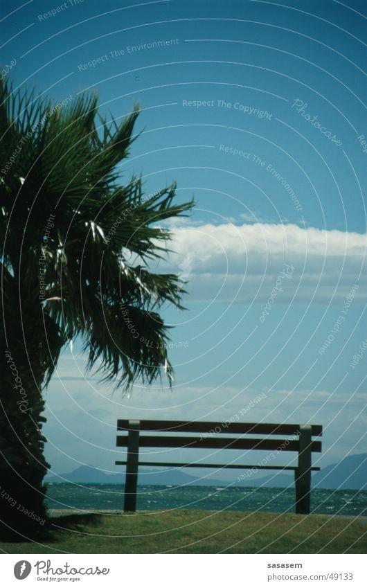 Sky Ocean Summer Beach Vacation & Travel Bench Africa Palm tree