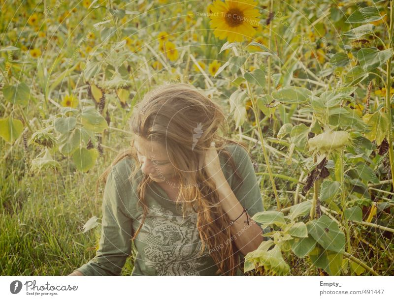 the muddi Summer Meadow Human being Woman warm hair Sunflower Sunflower field leaves