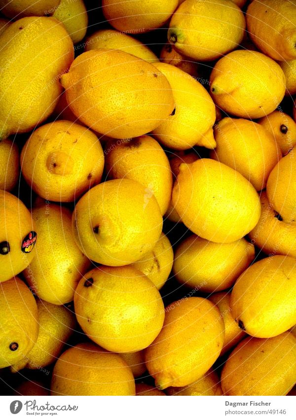 Winter Yellow Food Funny Background picture Fruit Gastronomy Anger Café Club Delicious Cocktail Lemon Vitamin Aggravation Printed Matter