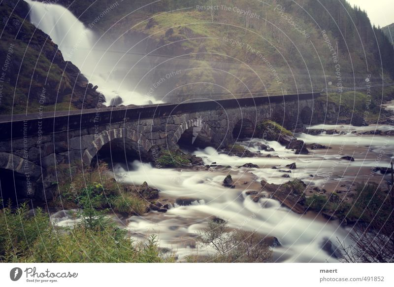 waterfall Landscape Water Autumn River Waterfall Esthetic Cold Gray Green Movement Norway Truck Colour photo Exterior shot Deserted Copy Space top Day