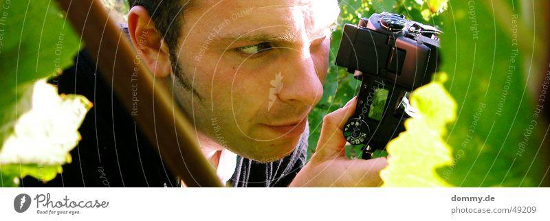 Man Sun Green Summer Leaf Eyes Mouth Nose Sit Ear Camera Facial hair Photographer Agree Take a photo Fellow