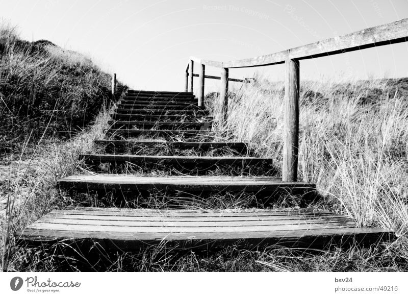 stairs Footbridge Black White Wood Ocean Sylt Stairs Landscape Beach dune
