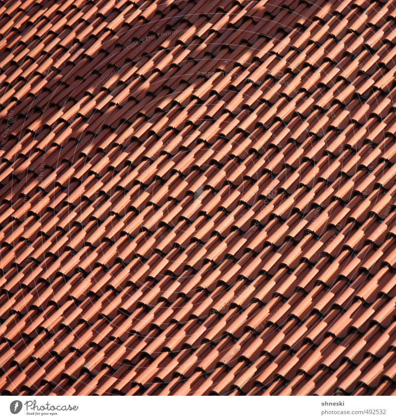 over the roofs of... House (Residential Structure) Detached house Architecture Roof Roofing tile Living or residing Colour photo Exterior shot Abstract Pattern