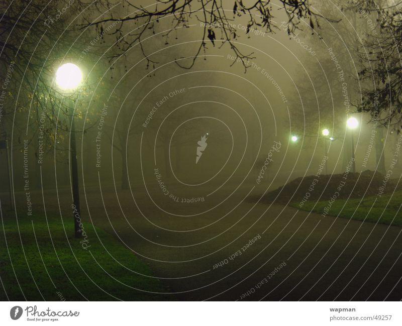 Olympiapark in the fog Fog Night Dark Creepy Street lighting Tree Munich Olympic Park Long exposure