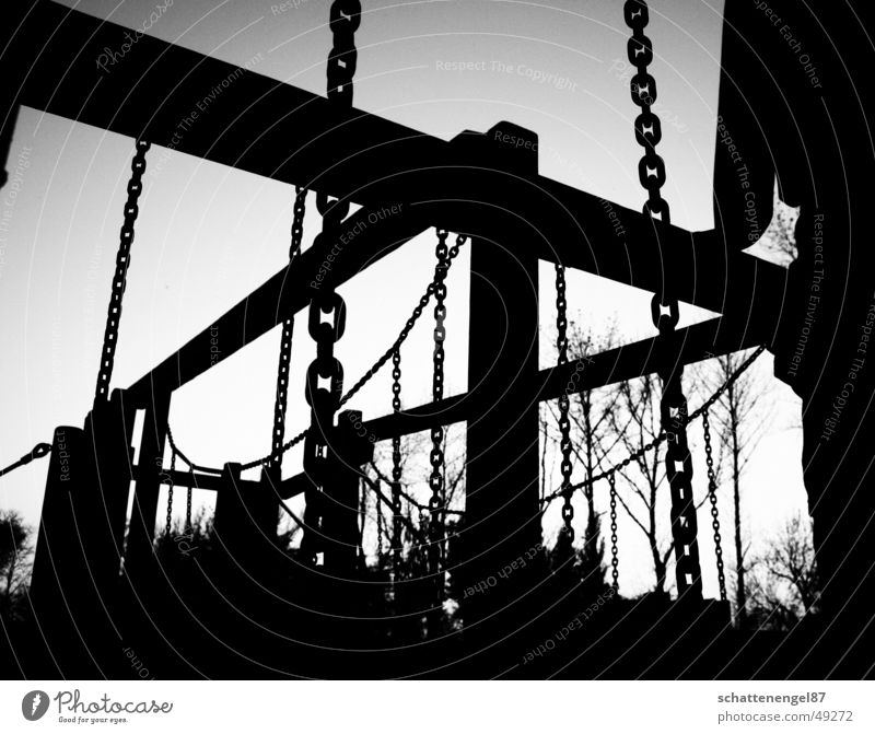 White Tree Joy Black Wood Gray Chain Playground