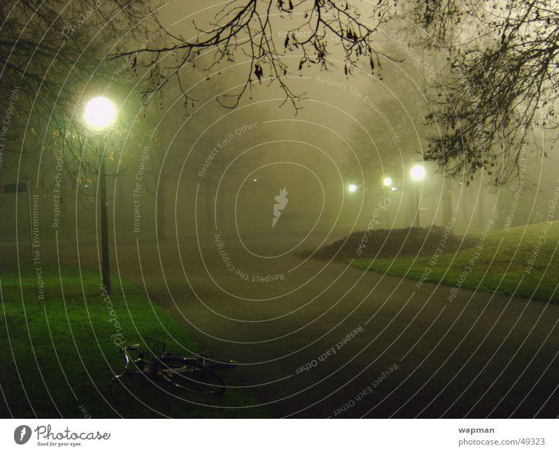 Olympic Park in the Fog - II Night Dark Creepy Street lighting Tree Munich Long exposure