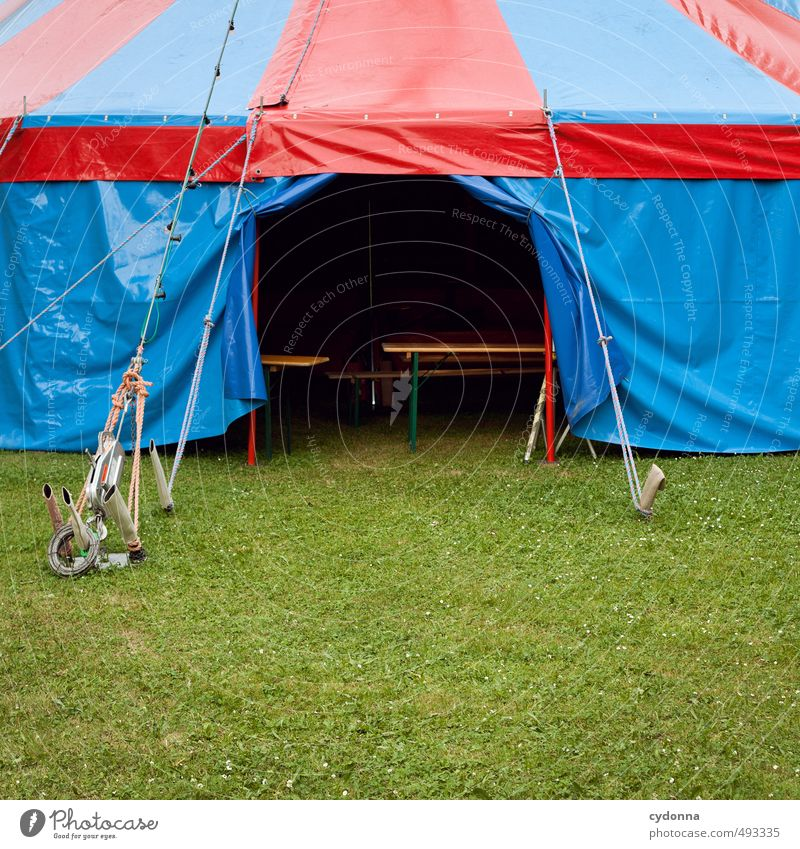 ring free Adventure Expedition Entertainment Event Feasts & Celebrations Fairs & Carnivals Environment Summer Grass Meadow Beginning Expectation Exotic
