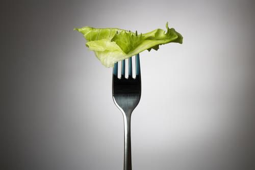 One lettuce leaf on fork Green Leaf Healthy Eating Gray Natural Food Body Health care Nutrition Fitness Thin Athletic Appetite Vegetable Sports Training