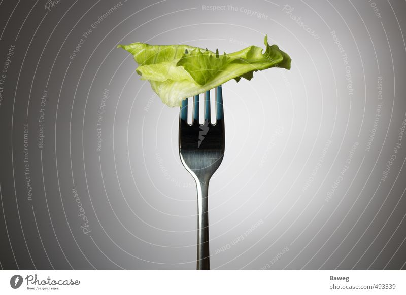 One lettuce leaf on fork Green Leaf Healthy Eating Gray Natural Healthy Food Body Health care Nutrition Fitness Thin Athletic Appetite Vegetable Sports Training
