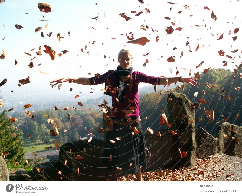 Woman Nature Sky Sun Joy Leaf Autumn Air Flying
