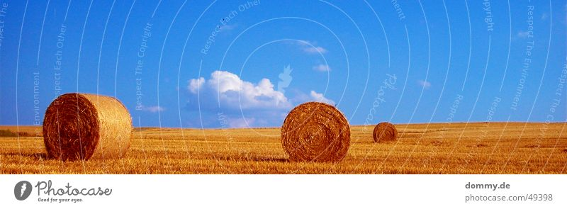 Nature White Sun Summer Clouds Yellow Brown Field 3 Round Collection Straw Bavaria Franconia Würzburg Bale of straw