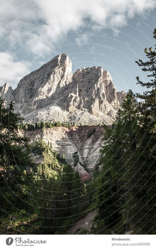Peitlerkofel [portrait] Environment Landscape Sky Clouds Summer Climate Beautiful weather Tree Forest Hill Rock Alps Mountain Peak Canyon Dolomites Stone Stand
