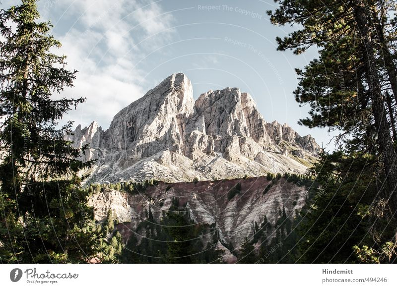 Peitlerkofel [landscape] Elements Earth Air Sky Clouds Summer Beautiful weather Tree Forest Hill Rock Alps Mountain Peak Dolomites Stone Stand Exceptional