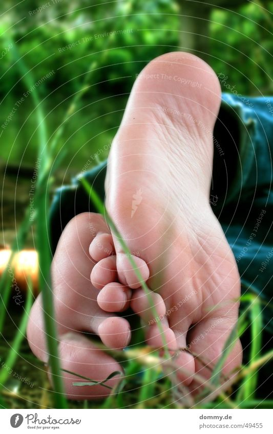 relaxation Relaxation Grass Summer Shoe sole Toes Main Würzburg steffi Stefanie Lie Feet Water Barefoot
