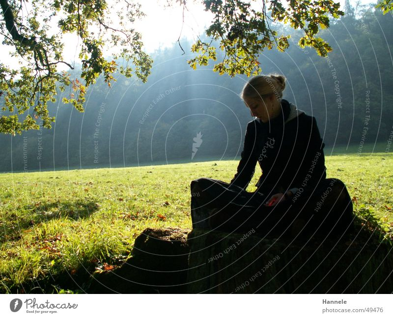 Hanna Light Woman Forest Meadow Autumn Tree Green Sun Lighting Bright Idyll Morning