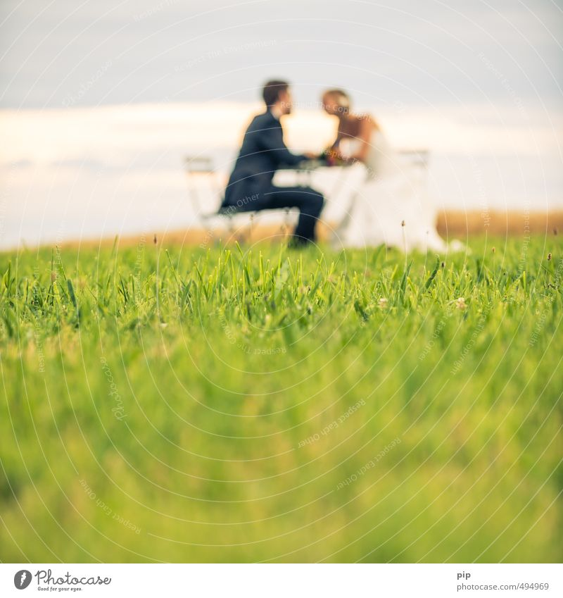 Human being Youth (Young adults) Summer Landscape Young woman Young man Love Meadow Feminine Grass Couple Together Masculine Sit Beautiful weather Wedding