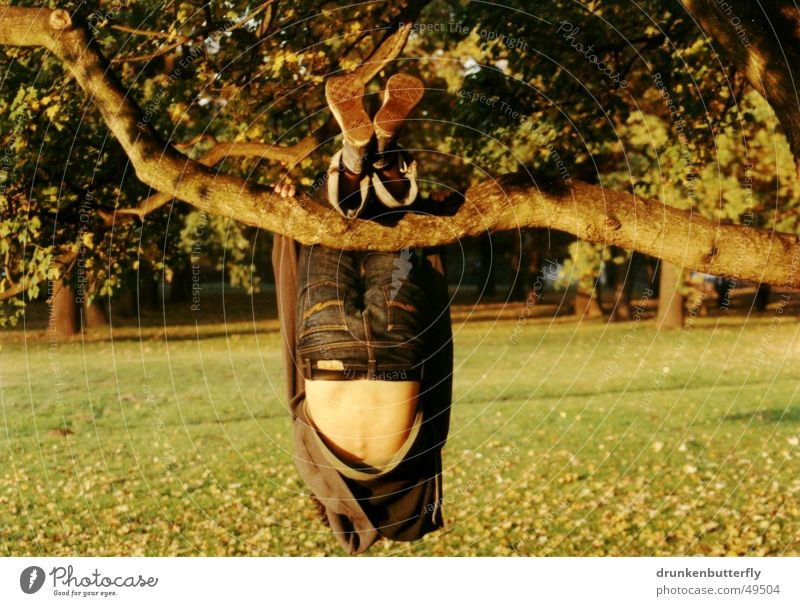 in the hanging garden Tree Autumn Leaf Meadow Footwear Hang Yellow Physics Green Dangle Grass Branch Human being Nature Back Jeans Climbing Warmth