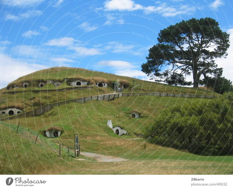 Shire - home of the Hobbits The Shire New Zealand The Hobbit Lord of the Rings Film location Film industry Tree Hill House (Residential Structure) fab set