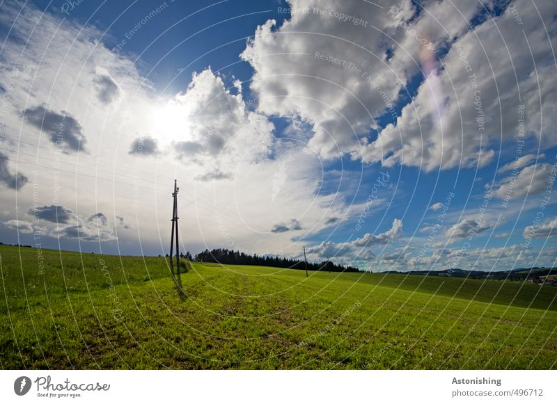 Green electricity Cable Environment Nature Landscape Plant Air Sky Clouds Horizon Sun Sunlight Summer Weather Beautiful weather Warmth Tree Grass Meadow Field