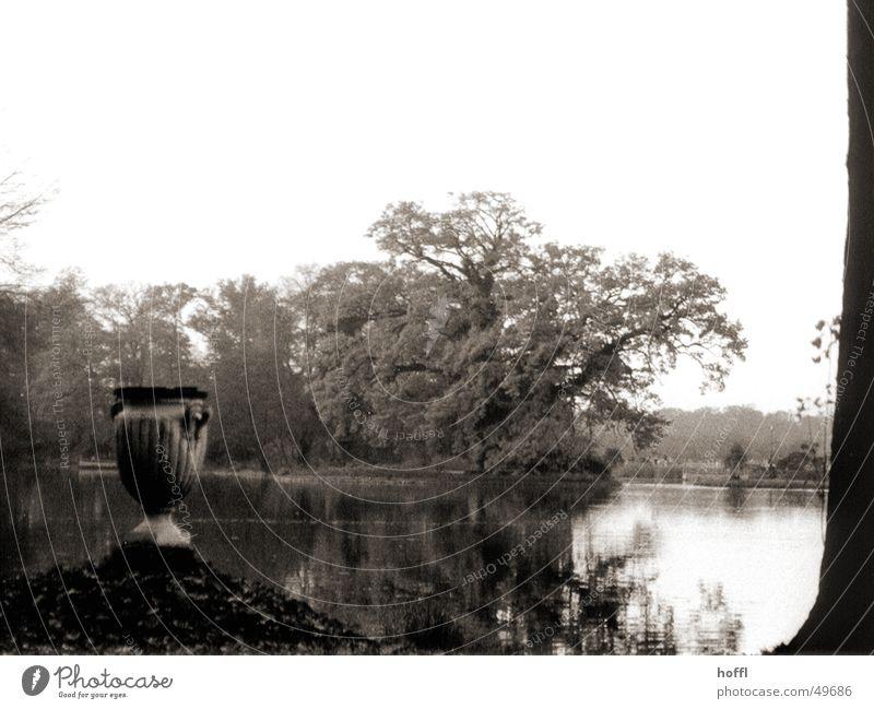 Wörlitz Park Lake Autumn Calm