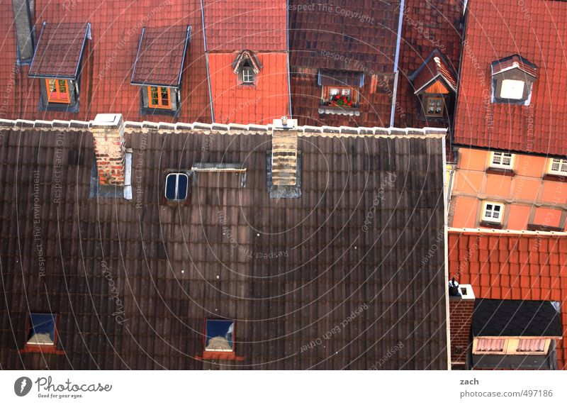 City Red House (Residential Structure) Window Wall (building) Wall (barrier) Architecture Building Facade Living or residing Roof Tilt Manmade structures Ruin