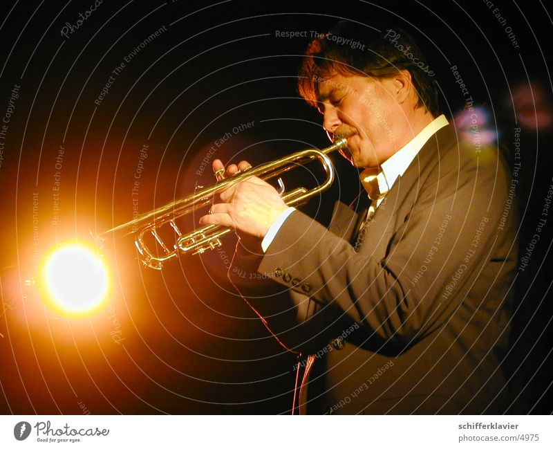 Jazz at the Lido Night life Music Human being Masculine Man Adults 1 30 - 45 years Stage Concert Musician Trumpet Suit Breathe Cool (slang) Warmth Gold Moody