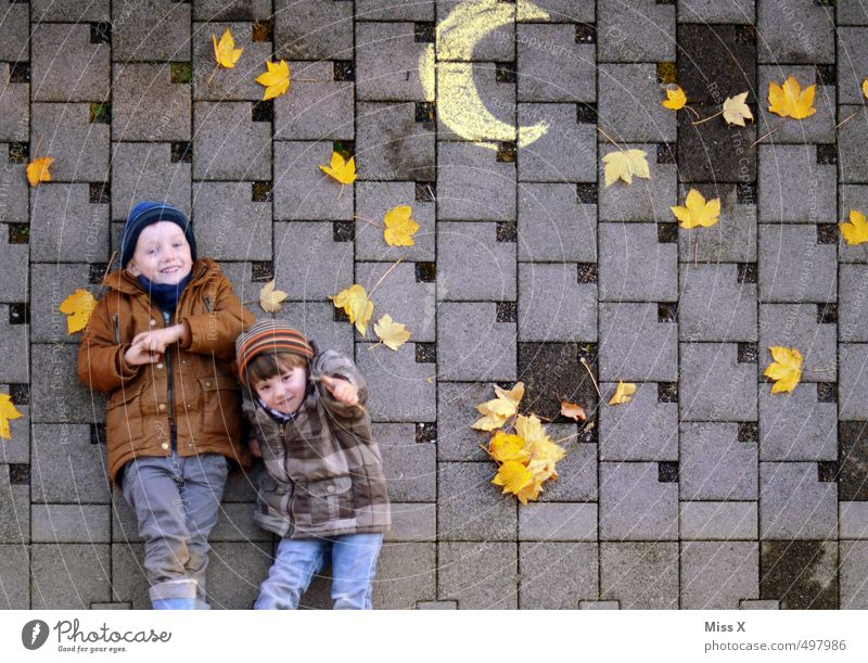 Human being Child Joy Leaf Autumn Funny Playing Laughter Lie Friendship Moody Leisure and hobbies Infancy Smiling Happiness Stars