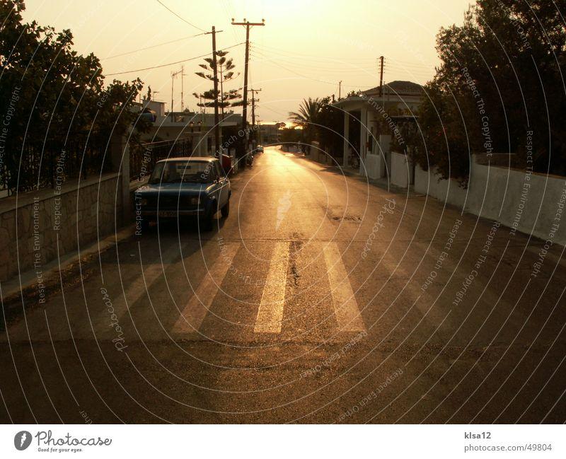 Road of Happiness ;) Romance Summer Zebra crossing Tree street sun car Sadness