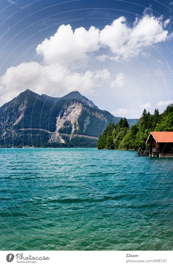Walchensee Nature Landscape Water Sky Clouds Summer Beautiful weather Tree Alps Mountain Lakeside Esthetic Natural Blue Green Calm Loneliness Relaxation