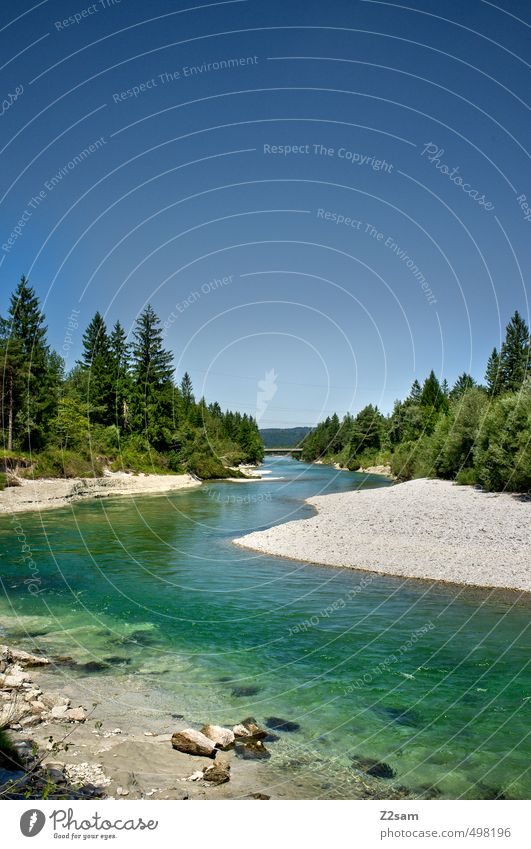 Isar Environment Nature Landscape Water Cloudless sky Summer Beautiful weather Tree Bushes River bank Esthetic Far-off places Infinity Cold Sustainability