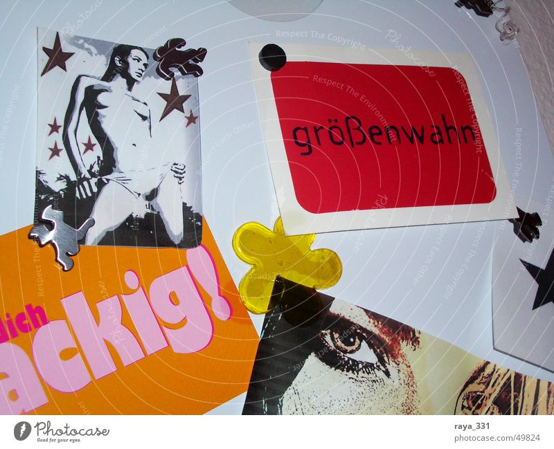 Woman White Red Flower Black Eyes Yellow Orange Pink Star (Symbol) Blackboard Bulletin board Magnetic Megalomania
