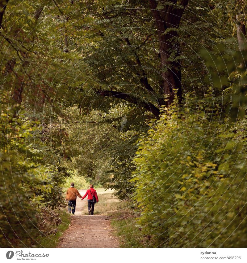 in twos Healthy Life Harmonious Well-being Trip Hiking Human being Female senior Woman Male senior Man Couple Partner Senior citizen 2 45 - 60 years Adults