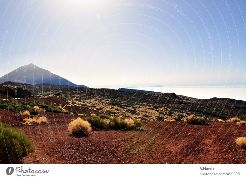 El Teide Environment Nature Landscape Earth Sand Air Cloudless sky Sunlight Summer Beautiful weather Warmth Drought Bushes Hill Volcano Desert Tenerife Spain