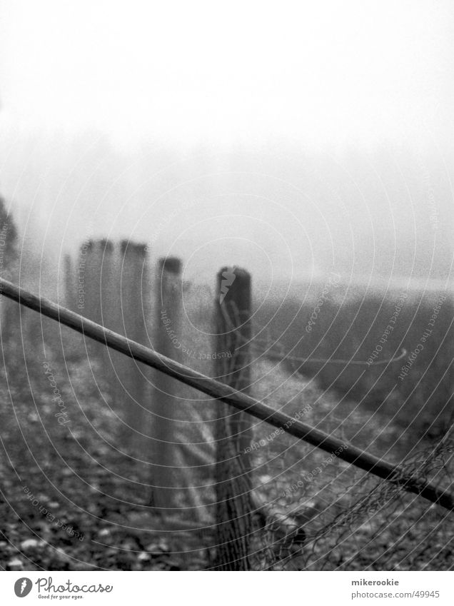 Fence in the fog Black & white photo Exterior shot Copy Space top Deep depth of field Nature Fog Control barrier Old Creepy Cold White Loneliness