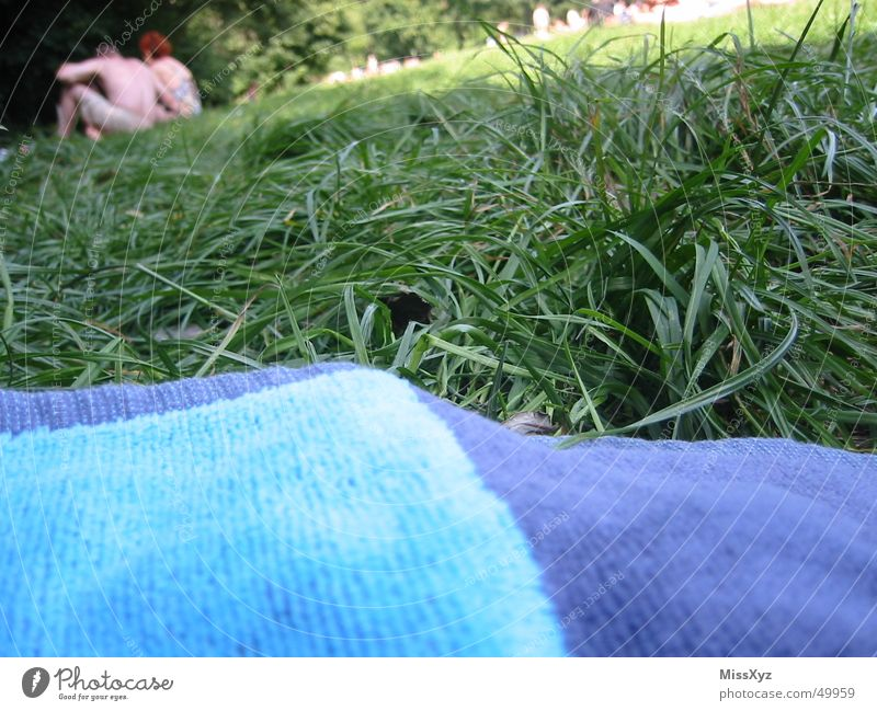 On the sunbathing lawn Meadow Lawn for sunbathing Summer Relaxation Towel Health Spa Open-air swimming pool Sunbathing Cuddling Grass Park Leisure and hobbies
