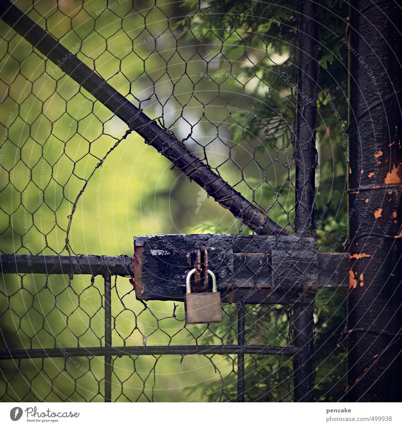 Encrypted Nature Sunlight Garden Outskirts Gate Door Peephole Sign Lock Wire netting fence Colour photo Exterior shot Close-up Detail Pattern Copy Space top Day