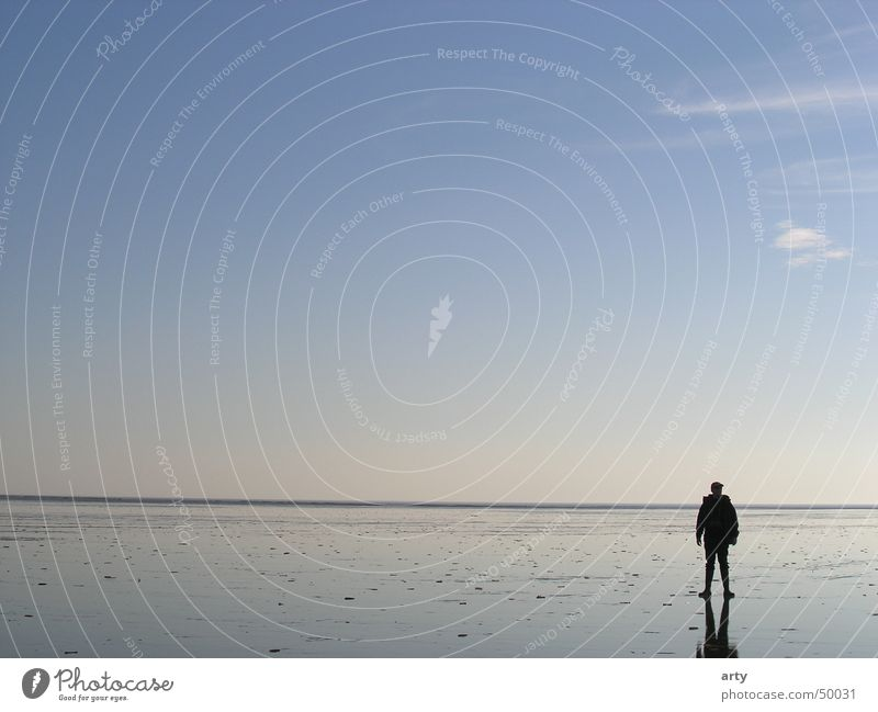 in the watt Horizon Ocean St. Peter-Ording Man Walk along the tideland Relaxation Exterior shot Landscape Mud flats North Sea Far-off places Sky Loneliness