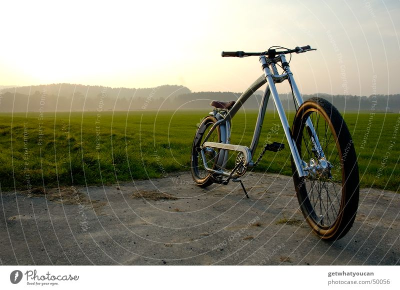 Suspended Bicycle Cruiser Americas Meadow Forest Light Physics Fork Edge Cool (slang) Evening Landscape Sky Sun Warmth Contentment Perspective Loneliness