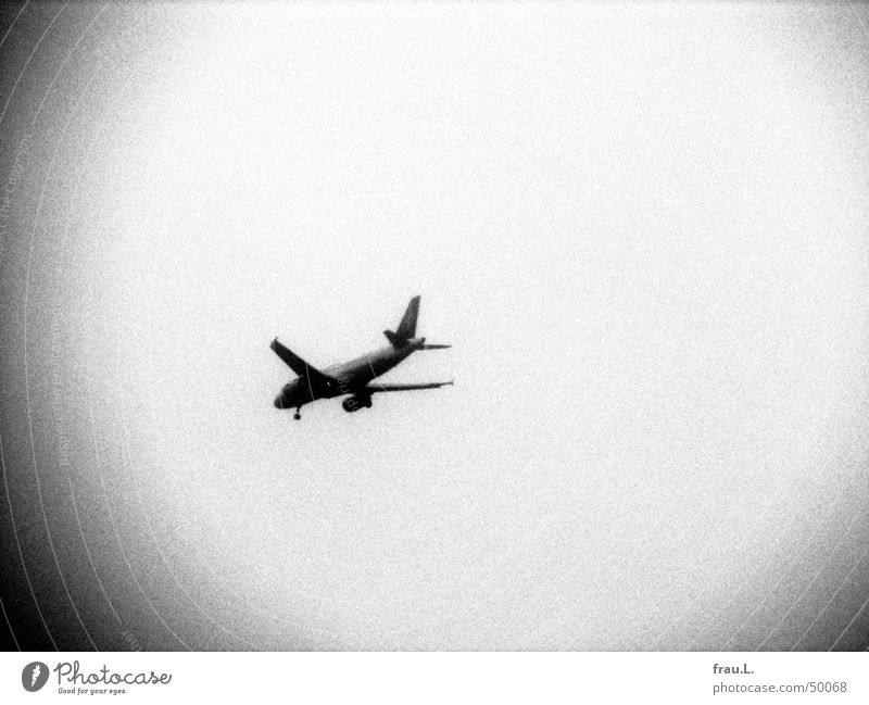 airplane Grainy Gray scale value Fincheswerder Airplane Beginning Holga Aviation Black & white photo Things Sky Reaction Vacation & Travel Logistics