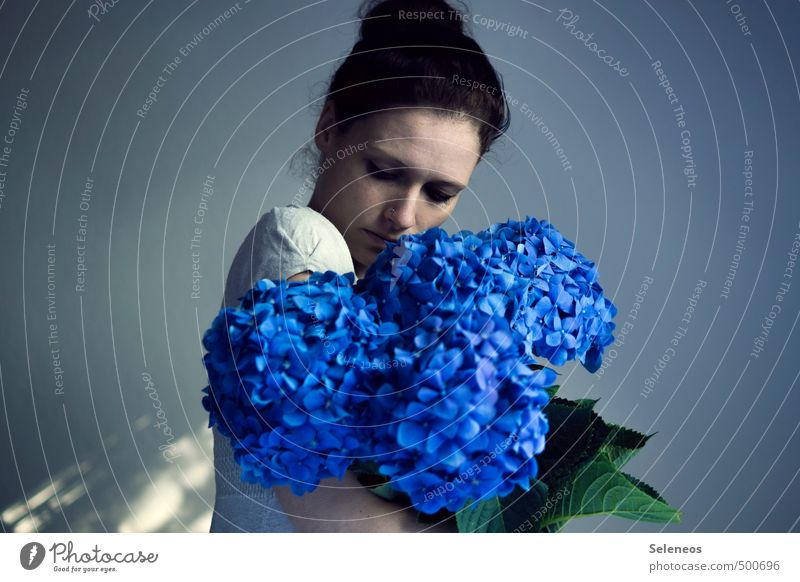 colour bombs Summer Human being Feminine Woman Adults Head 1 18 - 30 years Youth (Young adults) Plant Flower Blossom Hydrangea Hydrangea blossom Hydrangea leaf