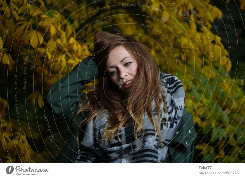 autumn posing Human being Feminine Young woman Youth (Young adults) 1 18 - 30 years Adults Environment Nature Landscape Plant Autumn Emotions Moody Colour photo