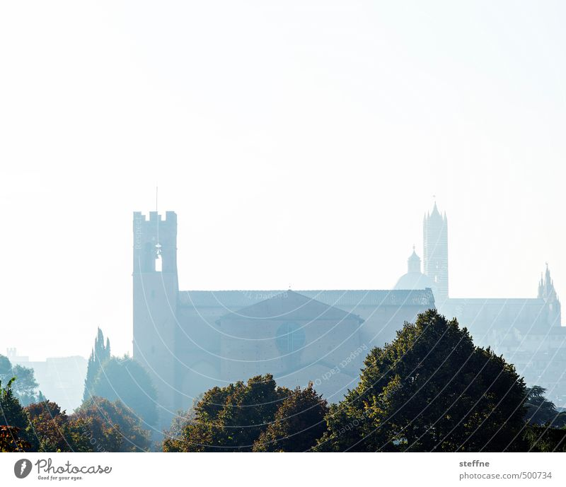 Church: Siena Cloudless sky Autumn Fog Tree Tuscany Italy Skyline Dome Exceptional Religion and faith Colour photo Deserted Copy Space top Dawn