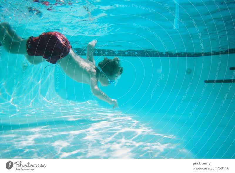 David underwater Dive Florida Swimming pool Summer Boy (child) Swimming & Bathing Water